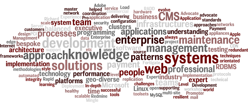 word-cloud overview of my CV